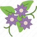 cowslip, decoration, floral, flower, primrose icon