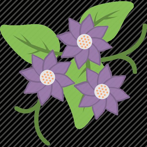 cowslip, decoration, floral, flower, primrose icon