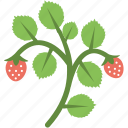 ecology, gardening, leaves, plant, seedling icon