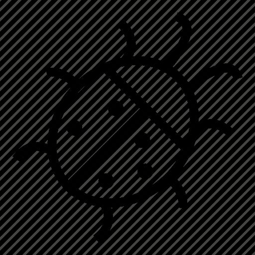 Bug, insect, ladybug, nature icon - Download on Iconfinder
