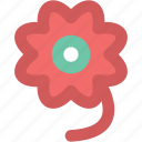 bloom, blossom, daisy flower, flower, spring flower icon