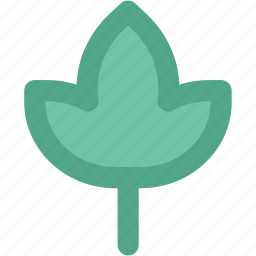 beauty flower, ecology, flower leaf, lily, lotus, nature icon