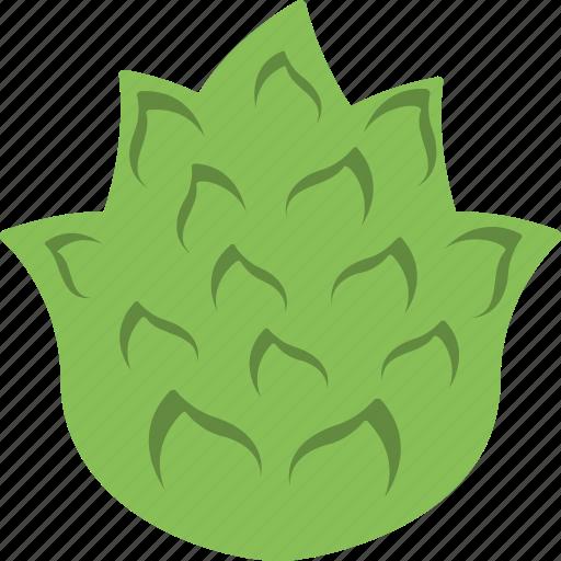 Artichoke, diet, food, nutrition, vegetable icon - Download on Iconfinder