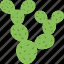 cacti, cactus, desert, nature, plant icon