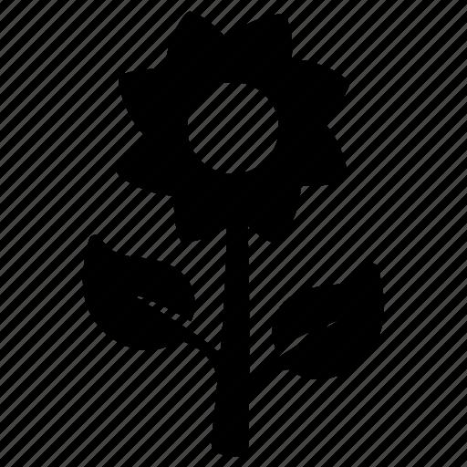 flower, garden, nature, plant icon