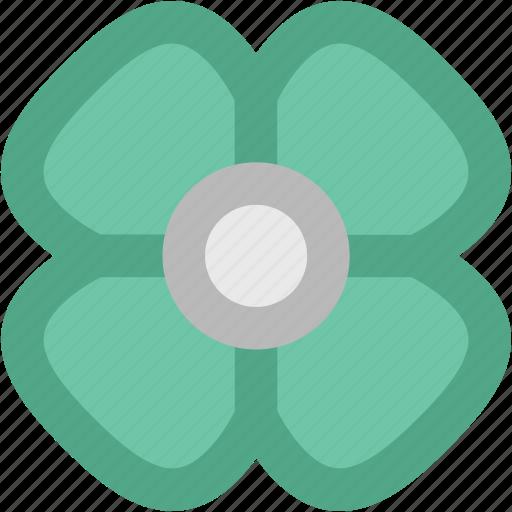 bloom, flower, hibiscus flower, hibiscus lobatus, rhododendron, rhododendron flower icon