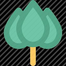 bud open, flower, garden, lotus, lotus bud, oriental, rose icon