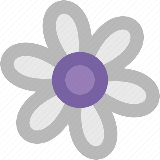 aster, aster flower, blossom, calendula, flower, freshness, nature, plant icon