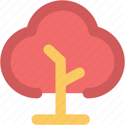 agricultural, ecology, evergreen, nature, plant, tree icon