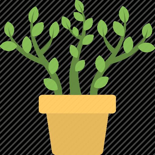 ecology, gardening, nature, plant, pot icon