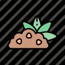 cacttus, desert, ecology, nature, plant icon