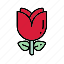 flower, nature, plant, red flower, tulip icon