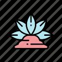 cactus, desert, nature, plant, succulent icon