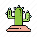 cactus, desert, nature icon