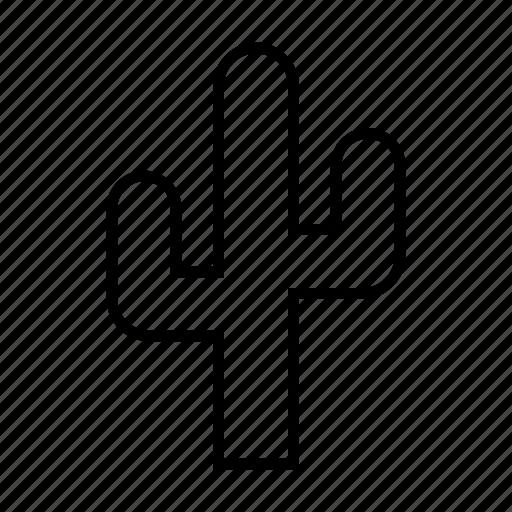 cactus, desert, disaster, nature, plant icon