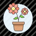 flourishing, flower, flowering, flowers, nature, plants, pot icon