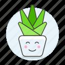 cactus, flowers, happy, nature, plants, plat, pot, smile, succulent icon