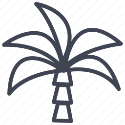 ecology, forest, nature, palm, plant, tree icon
