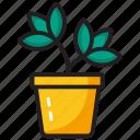 agriculture, farming, houseplant, plantation, pot plant icon