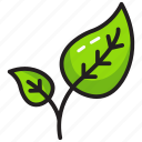 agriculture, farming, leaves, nature, plant icon