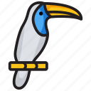 bird, living organism, nature, specie, toco, toucan icon
