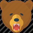 animal, bear, danger, nature, wild, wildlife