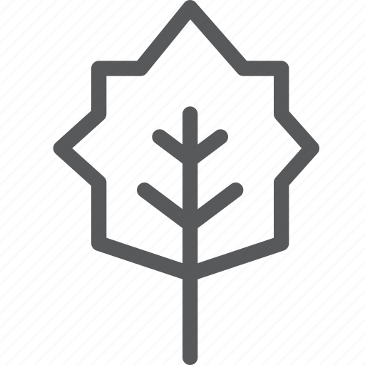 ecology, forest, green, leaf, nature, tree icon