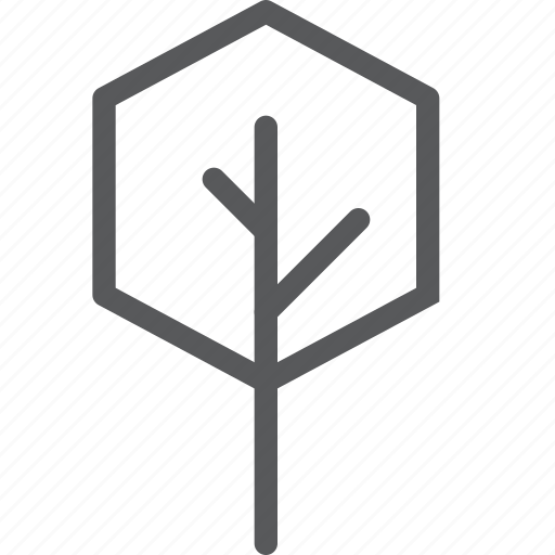 big, ecology, forest, natural, plant, tree, wood icon