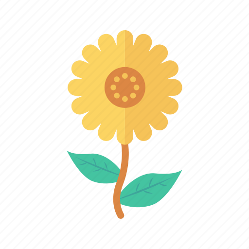 Bloom, camomile, flower, garden, nature icon - Download on Iconfinder