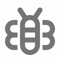 bee, insect icon