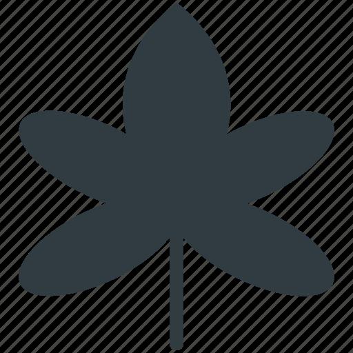 Autumn, foliage, leaf, maple leaf, winter leaf icon - Download on Iconfinder