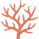 branching, coral, life, marine, red, reef, staghorn icon
