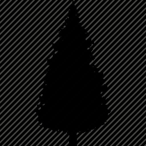 christmas, evergreen, nature, park, pine, pinetree, tree icon