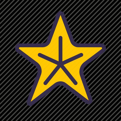animal, nautical, ocean, sea, star icon