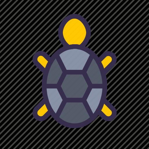 animal, beach, nautical, sea, tortoise, turtle icon