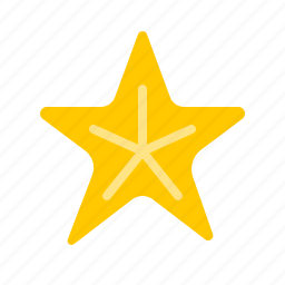 animal, fish, nautical, ocean, sea, star, starfish icon