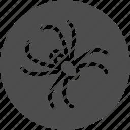 antivirus, bot, bug, insect, spider, virus icon