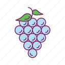 food, fruit, fruit basket, grapes icon
