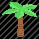beach, cartoon, floral, isometric, palm, tattoo, tree icon