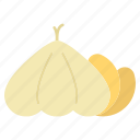 aromatic, food, garlic, ingredient, organic, seasoning, vegetable icon