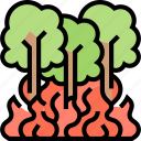 forest, fire, trees, jungle, disaster