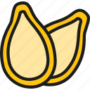 beans, color, food, pod, pumpkin, seed, vegetarian icon