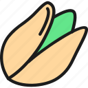 bean, beans, color, food, nut, pistachio, vegetarian icon