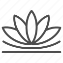 lotus, flower, chinese, plant, leaf, petal, swamp
