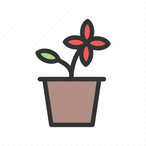 beautiful, flower, leaf, nature, pot, summer, view icon