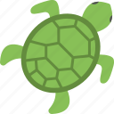 sea animal, sea life, sea turtle, tortoise, turtle icon
