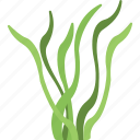 algae, algae bloom, cladophora, seaweed, underwater alga icon