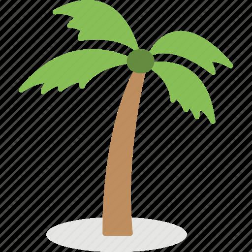 coconut tree, island tree, palm tree, tree, tropical tree icon