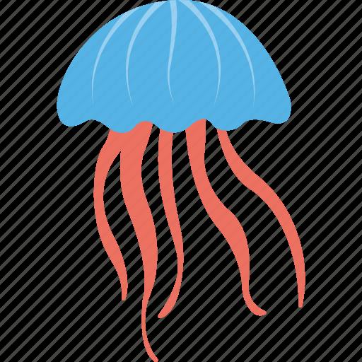 fish, jellyfish, marine creature, sea animal, sea life icon