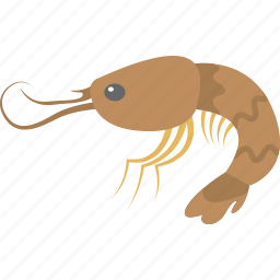 marine creature, prawn, sea life, seafood, shrimp icon